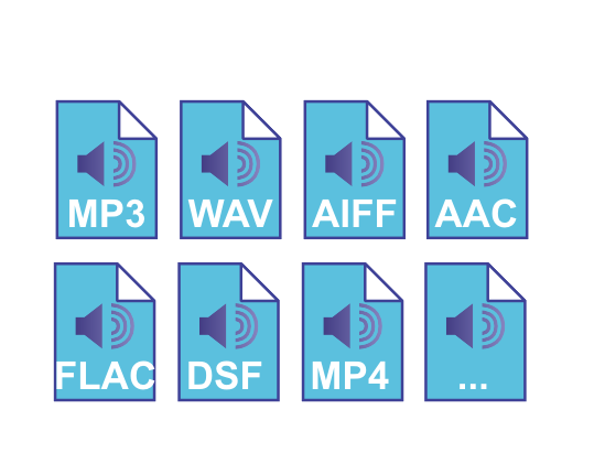 Supports multiple file formats, not just MP3